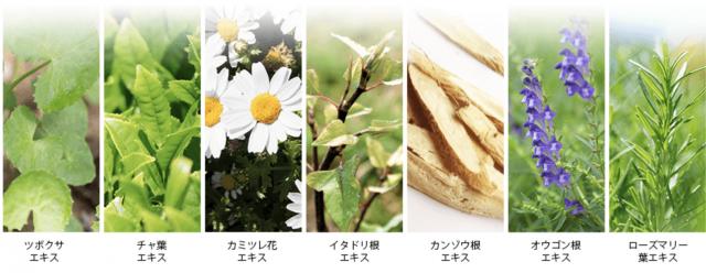 7種の天然ハーブエキス
