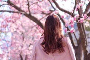 桜を見ている髪の長い女の子