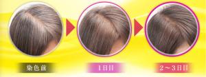 3日間使った女性の髪