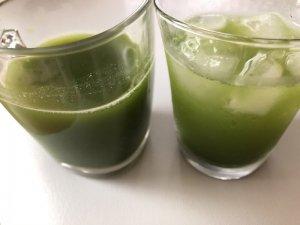 アイストホットの緑茶