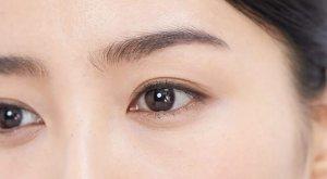 しっかりとした印象を与える眉毛